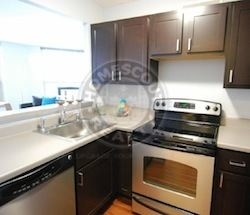 2 Bedrooms, West Loop Rental in Chicago, IL for $2,650 - Photo 2