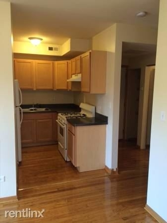 1 Bedroom, Woodlawn Rental in Chicago, IL for $850 - Photo 1