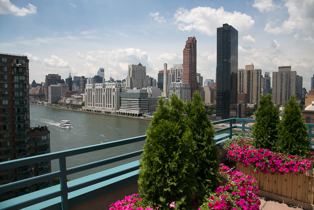 3 Bedrooms, Roosevelt Island Rental in NYC for $5,500 - Photo 1
