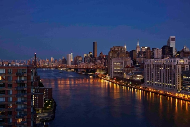 2 Bedrooms, Roosevelt Island Rental in NYC for $3,900 - Photo 2