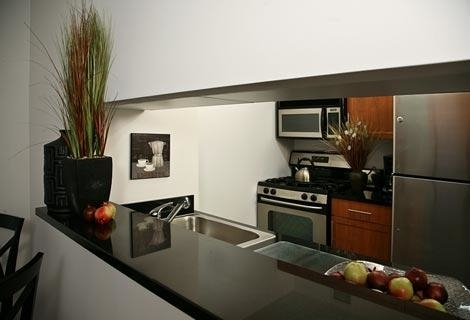 3 Bedrooms, Financial District Rental in NYC for $3,950 - Photo 2